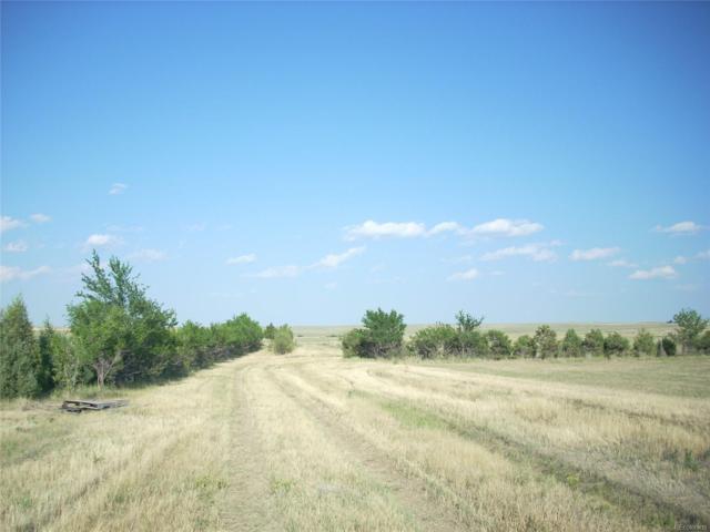 41650 County Road 53 Road, Kiowa, CO 80117 (MLS #7494557) :: 8z Real Estate