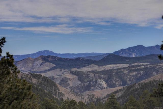 906 Impala Trail, Bailey, CO 80421 (MLS #7496448) :: 8z Real Estate