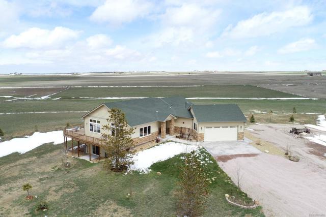 11749 Heidemann Avenue, Franktown, CO 80116 (#7498394) :: Compass Colorado Realty