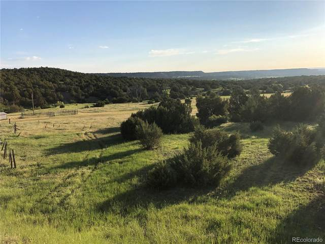 Siloam Road, Beulah, CO 81023 (MLS #7510577) :: 8z Real Estate