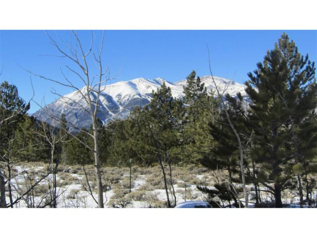 2250 Asteroid Placer, Twin Lakes, CO 81251 (#7510838) :: Structure CO Group