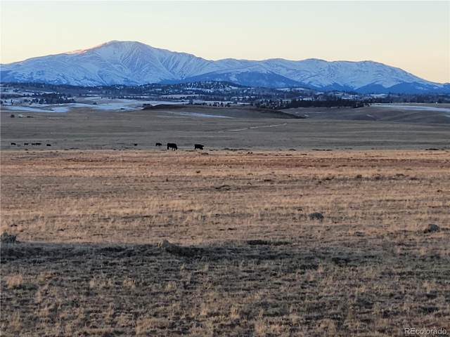1 Badger Basin Road, Hartsel, CO 80449 (#7532131) :: Stephanie Fryncko | Keller Williams Integrity