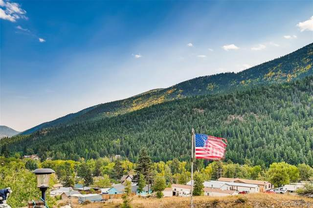 2293 County Road 308, Dumont, CO 80436 (#7572103) :: The Griffith Home Team