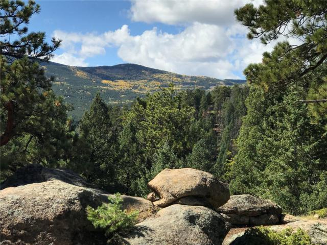7290 Timber Trail Road, Evergreen, CO 80439 (#7609653) :: The Pete Cook Home Group