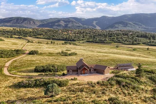 8670 S Perry Park Road, Larkspur, CO 80118 (#7627787) :: Berkshire Hathaway Elevated Living Real Estate
