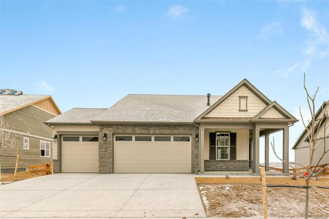 15571 Quince Circle, Thornton, CO 80602 (MLS #7639762) :: 8z Real Estate