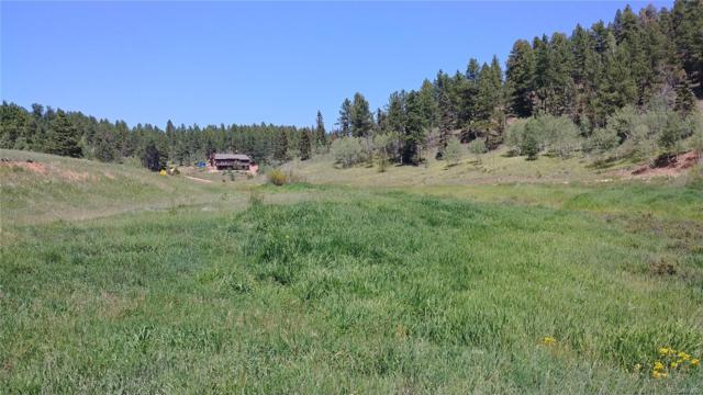 1264 Gold Dust Creek Road, Florissant, CO 80816 (#7647226) :: Sellstate Realty Pros