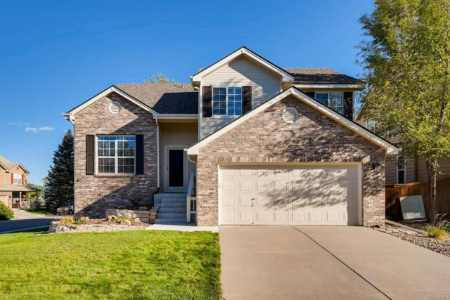 317 Wessex Circle, Highlands Ranch, CO 80126 (MLS #7653035) :: Kittle Real Estate