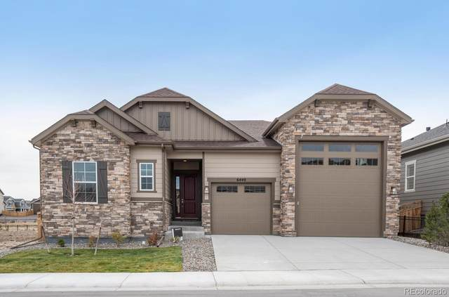 6440 Leilani Drive, Castle Rock, CO 80108 (#7691691) :: The HomeSmiths Team - Keller Williams