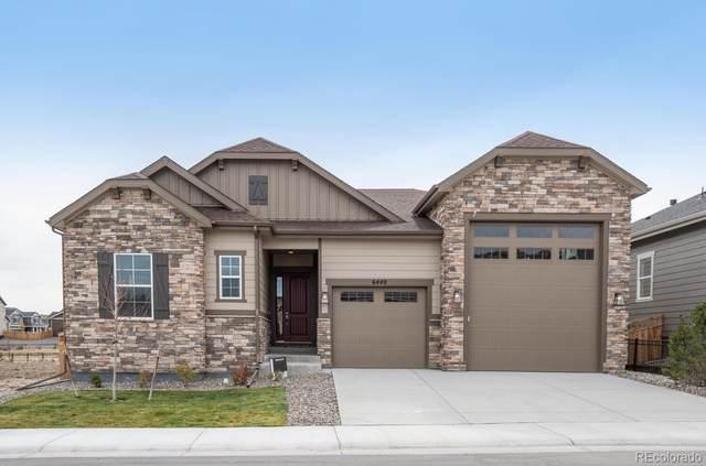 6440 Leilani Drive, Castle Rock, CO 80108 (#7691691) :: iHomes Colorado