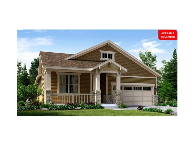 14815 Munich Avenue, Parker, CO 80134 (MLS #7740621) :: 8z Real Estate