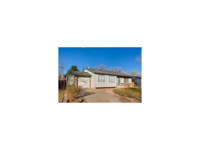4737 S Xenophon Way, Morrison, CO 80465 (#7744637) :: The Sold By Simmons Team