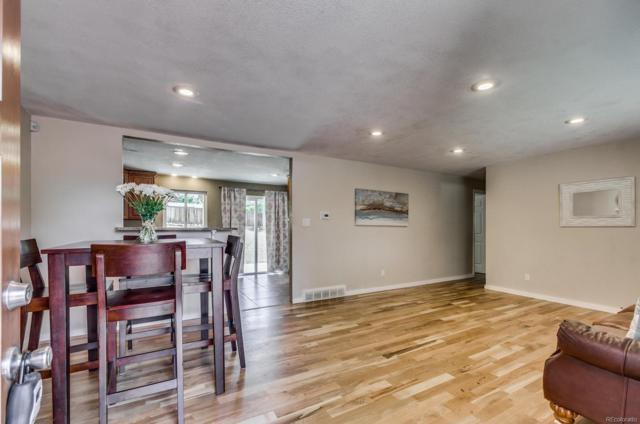6538 S Clayton Street, Centennial, CO 80121 (#7758849) :: Bring Home Denver