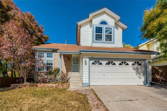 971 Thames Street, Highlands Ranch, CO 80126 (#7800258) :: The DeGrood Team