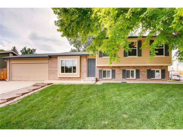 7971 S Estes Street, Littleton, CO 80128 (MLS #7806440) :: 8z Real Estate