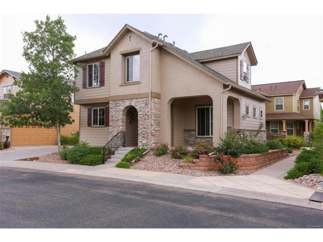 4005 Blue Pine Circle, Highlands Ranch, CO 80126 (#7822680) :: The Peak Properties Group