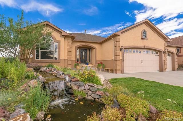 13482 Crane Canyon Loop, Colorado Springs, CO 80921 (MLS #7837935) :: 8z Real Estate