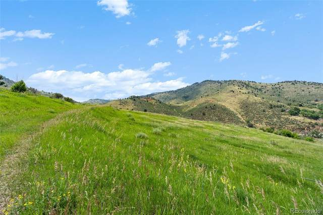 21725 Shady Lane, Idledale, CO 80453 (#7838650) :: The Colorado Foothills Team | Berkshire Hathaway Elevated Living Real Estate