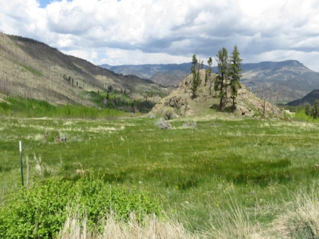 243 Forest Circle, South Fork, CO 81154 (MLS #7844357) :: 8z Real Estate