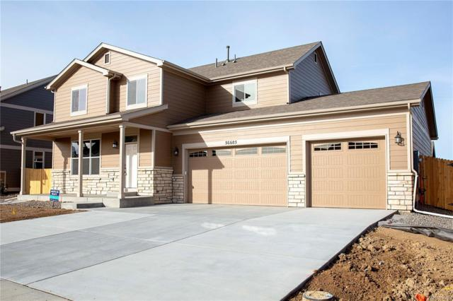 56685 E 22nd Place, Strasburg, CO 80136 (#7848279) :: The Heyl Group at Keller Williams