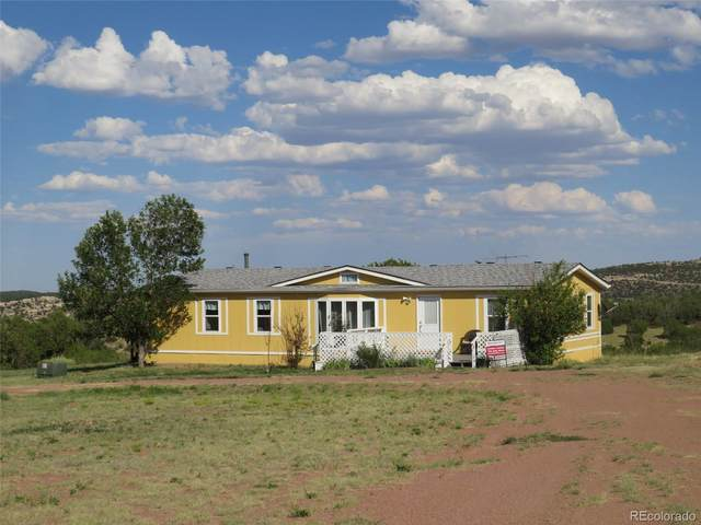 186 County Road 80, Canon City, CO 81212 (MLS #7850669) :: 8z Real Estate