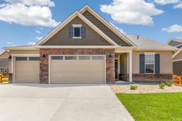 15630 Spruce Street, Thornton, CO 80602 (MLS #7860601) :: 8z Real Estate