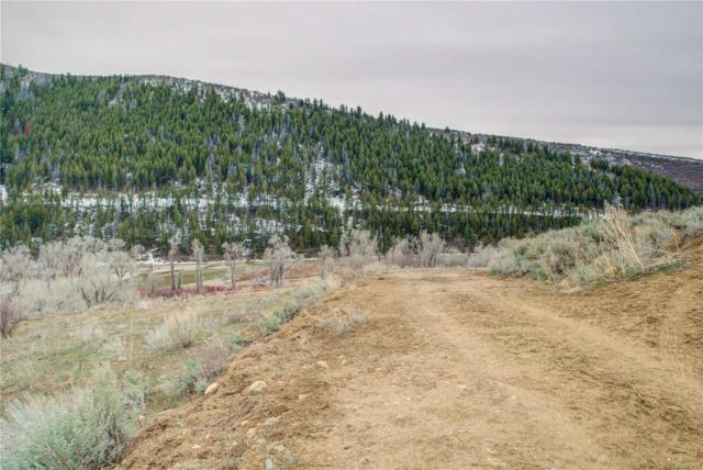 480 Ranch Road, Hayden, CO 81639 (MLS #7861112) :: 8z Real Estate