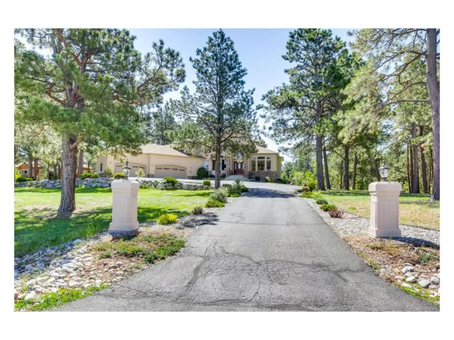 1105 E Trumpeters Court, Monument, CO 80132 (MLS #7879411) :: 8z Real Estate