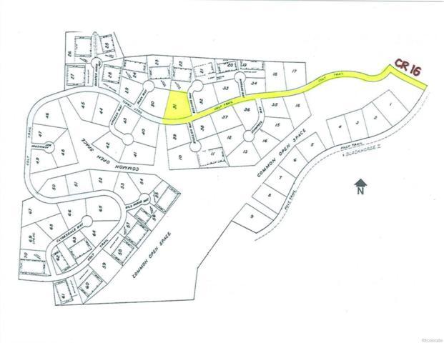Lot 31 Black Horse II, Oak Creek, CO 80467 (#7879725) :: 5281 Exclusive Homes Realty