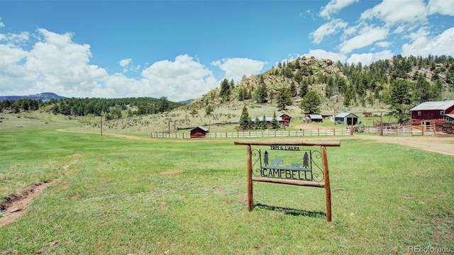 3193 County Road 71, Guffey, CO 80820 (#7922730) :: James Crocker Team