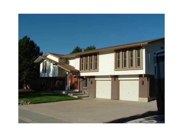 8123 Ammons Way, Arvada, CO 80005 (MLS #7939785) :: 8z Real Estate