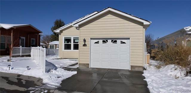 6155 Mallow Green #281, Frederick, CO 80530 (#7943102) :: The DeGrood Team