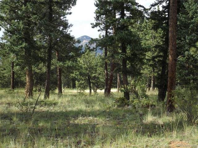 46 Firehouse Road, Pine, CO 80470 (#7967242) :: The Dixon Group