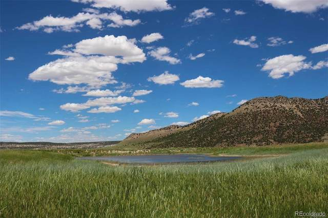 n/a County Road 10, Maybell, CO 81640 (#8028795) :: Wisdom Real Estate