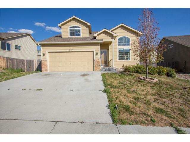 6147 Dancing Moon Way, Colorado Springs, CO 80911 (MLS #8040115) :: 8z Real Estate