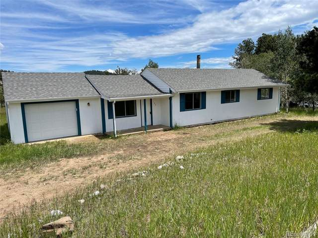 192 Burland Drive, Bailey, CO 80421 (#8042827) :: Stephanie Fryncko | Keller Williams Integrity