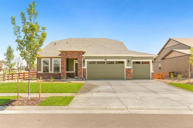 15575 Quince Circle, Thornton, CO 80602 (MLS #8059996) :: 8z Real Estate