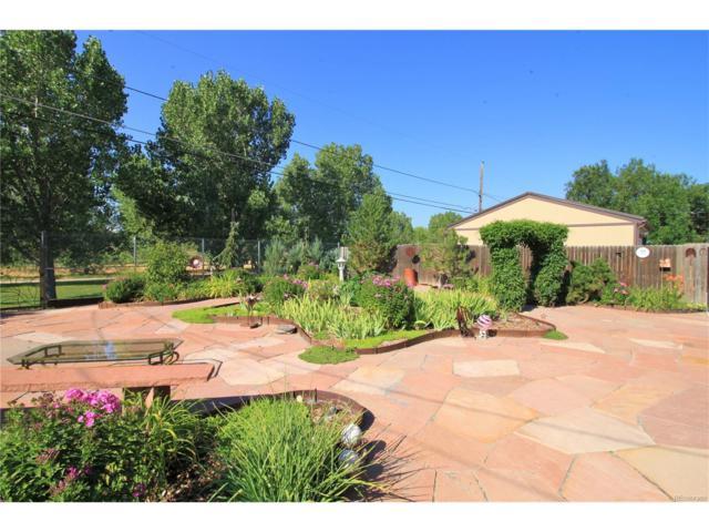 12496 E Park Lane Drive, Aurora, CO 80011 (MLS #8061282) :: 8z Real Estate