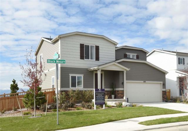6101 Black Mesa Road, Frederick, CO 80516 (#8078704) :: The Galo Garrido Group