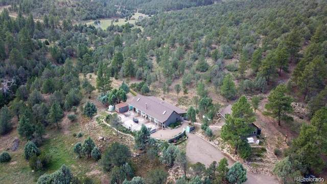 7500 Pavo Canyon Road, Trinidad, CO 81082 (MLS #8080877) :: 8z Real Estate