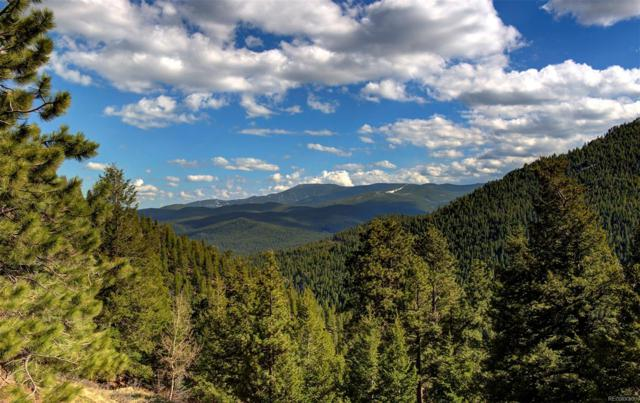 21286 Trappers Trail, Morrison, CO 80465 (#8157096) :: The City and Mountains Group