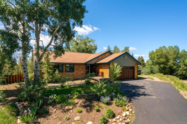 840 Conifer Circle, Steamboat Springs, CO 80487 (#8185500) :: Bring Home Denver