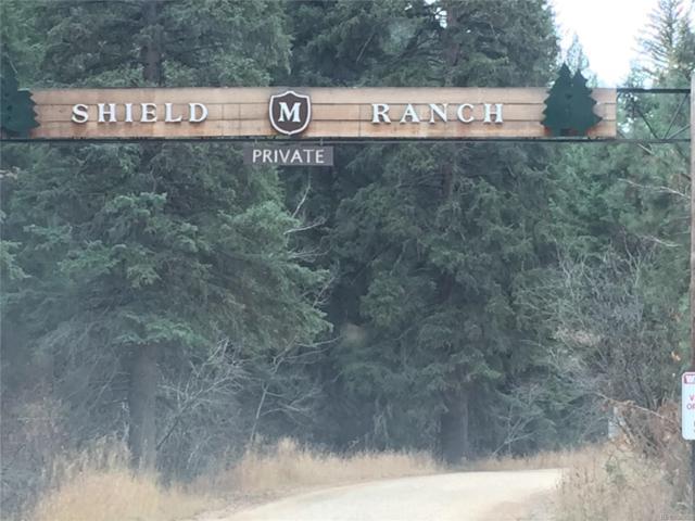 Mckinney Ranch Trail, Jefferson, CO 80433 (MLS #8190641) :: 8z Real Estate
