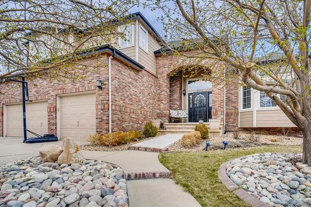 6071 Puma Ridge, Littleton, CO 80124 (#8192529) :: HomeSmart