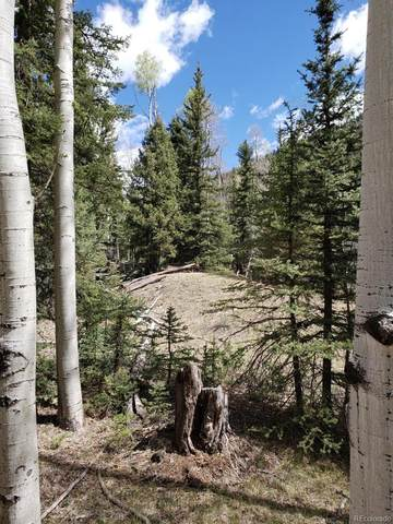 Vacant Land, Jasper, CO 81132 (#8199646) :: Re/Max Structure
