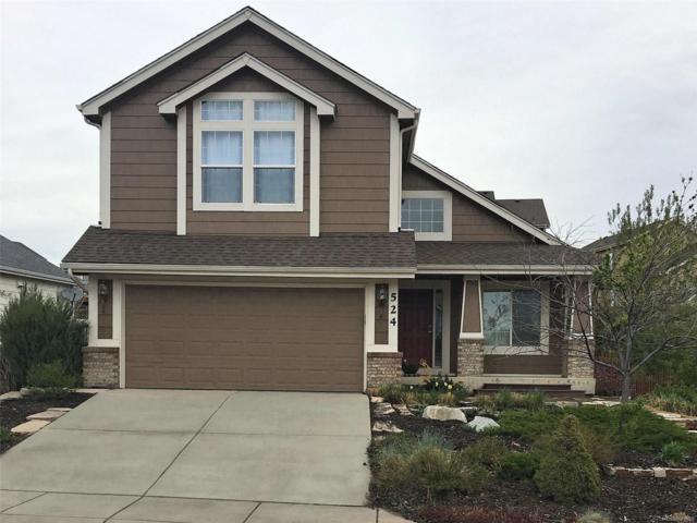 524 Fox Run Circle, Colorado Springs, CO 80921 (MLS #8244754) :: 8z Real Estate