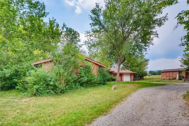 11256 W 38th Avenue, Wheat Ridge, CO 80033 (#8247941) :: Kimberly Austin Properties