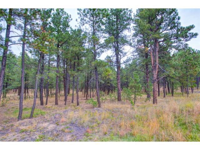 15224 Pole Pine Point, Colorado Springs, CO 80908 (#8247999) :: The Peak Properties Group