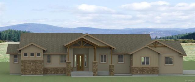 18385 Prairie Coach View, Calhan, CO 80808 (#8259870) :: Mile High Luxury Real Estate