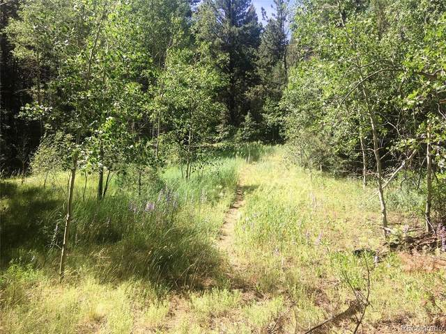 Tract B County Road 4, Howard, CO 81233 (#8306597) :: The DeGrood Team